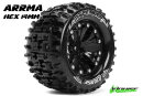 Team Louise L-T3202SBCM Mt-Pioneer 1-10 Monster Truck...